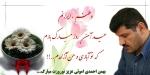 bahman ahmadi